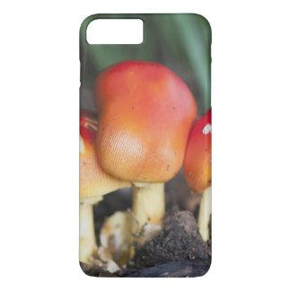 Coque iPhone 8 Plus/7 Plus Champignon de famille d'amanite