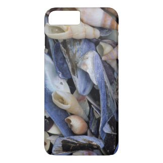 Coque iPhone 8 Plus/7 Plus Coquillages, Cape Town, le Cap-Occidental