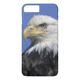 Coque iPhone 8 Plus/7 Plus Eagle chauve, (leucocephalus de Haliaeetus),