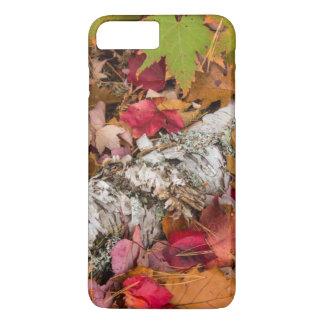 Coque iPhone 8 Plus/7 Plus Écorce de bouleau de couverture de feuille