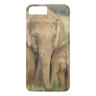Coque iPhone 8 Plus/7 Plus Éléphant indien/asiatique et jeunes un, Corbett