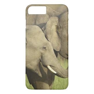 Coque iPhone 8 Plus/7 Plus Éléphants indiens/asiatiques partageant a