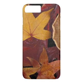 Coque iPhone 8 Plus/7 Plus Feuille et champignon de chute
