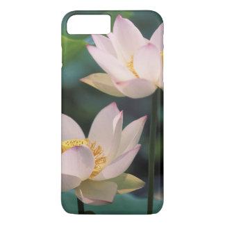 Coque iPhone 8 Plus/7 Plus Fleur de Lotus dans la fleur, Chine