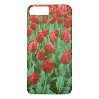 Coque iPhone 8 Plus/7 Plus Fleurs de champ de tulipe pendant le ressort