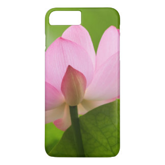 Coque iPhone 8 Plus/7 Plus Franklin OR, jardin de l'eau de Perry, Lotus