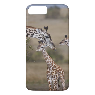 Coque iPhone 8 Plus/7 Plus Girafe de Maasai (girafe Tippelskirchi) comme vu