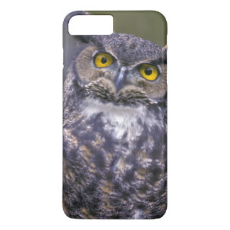 Coque iPhone 8 Plus/7 Plus Grand hibou à cornes