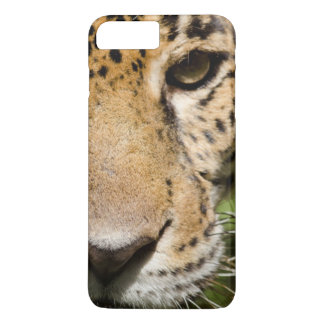 Coque iPhone 8 Plus/7 Plus Jaguar captif dans la clôture de jungle