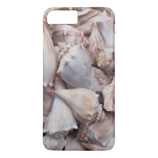 Coque iPhone 8 Plus/7 Plus Key West, coquillages