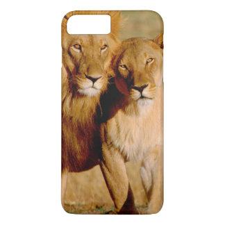Coque iPhone 8 Plus/7 Plus L'Afrique, Namibie, Okonjima. Lion et lionne