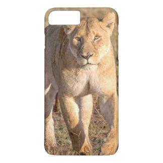 Coque iPhone 8 Plus/7 Plus L'Afrique, Tanzanie, Serengeti. Lion et lionne