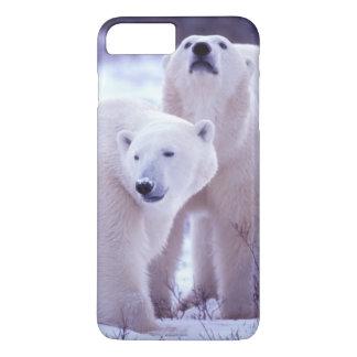 Coque iPhone 8 Plus/7 Plus L'Amérique du Nord, Canada, Manitoba, Churchill. 2