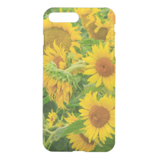 Coque iPhone 8 Plus/7 Plus Le grand champ des tournesols s'approchent du lac
