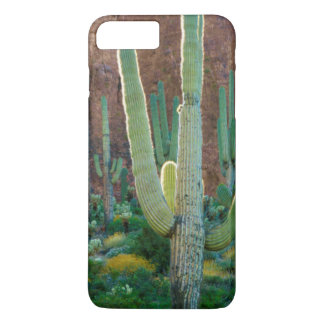 Coque iPhone 8 Plus/7 Plus Les Etats-Unis, Arizona. Gisement de cactus de