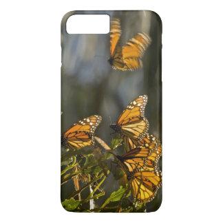 Coque iPhone 8 Plus/7 Plus Les Etats-Unis, la Californie, le comté de San