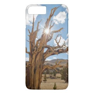 Coque iPhone 8 Plus/7 Plus Les Etats-Unis, la Californie, réserve forestière