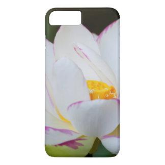 Coque iPhone 8 Plus/7 Plus Les Etats-Unis, la Géorgie, la savane, floraison