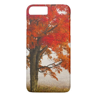 Coque iPhone 8 Plus/7 Plus Les Etats-Unis, la Virginie Occidentale, Davis.