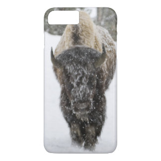 Coque iPhone 8 Plus/7 Plus Les Etats-Unis, WY, Yellowstone NP, bison
