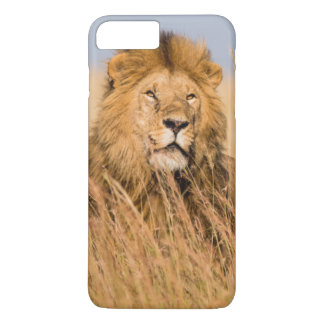 Coque iPhone 8 Plus/7 Plus Lion masculin caché dans l'herbe