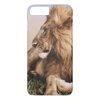 Coque iPhone 8 Plus/7 Plus Lion se reposant dans l'herbe