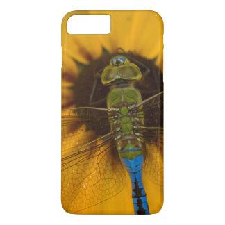 Coque iPhone 8 Plus/7 Plus Mâle vert commun de Darner sur Susan Noir-eyed