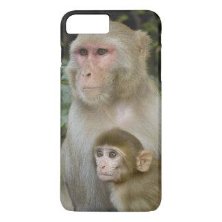 Coque iPhone 8 Plus/7 Plus Mère et bébé de mulatta de Macaca de Macaques de