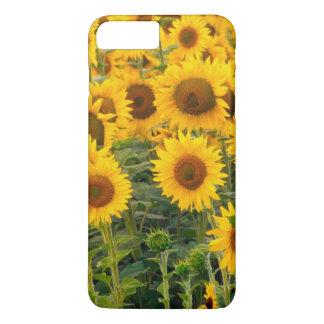 Coque iPhone 8 Plus/7 Plus Na, Etats-Unis, le Colorado, tournesols