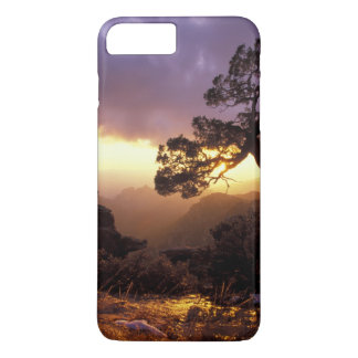 Coque iPhone 8 Plus/7 Plus Na, les Etats-Unis, l'Arizona, Tucson, coucher du