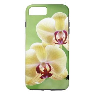 Coque iPhone 8 Plus/7 Plus Orchidée jaune et rose