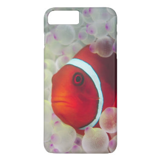 Coque iPhone 8 Plus/7 Plus Paupau Nouvelle-Guinée, la Grande barrière de