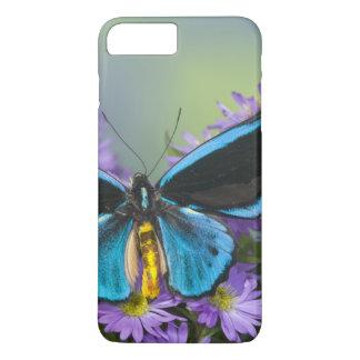 Coque iPhone 8 Plus/7 Plus Photographie de Sammamish Washington du papillon