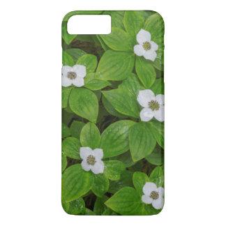 Coque iPhone 8 Plus/7 Plus Plan rapproché de bunchberry avec les fleurs