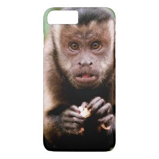 Coque iPhone 8 Plus/7 Plus Plan rapproché d'un singe noir-couvert de capucin