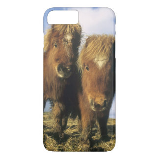 Coque iPhone 8 Plus/7 Plus Poney de Shetland, Îles Shetland de continent,