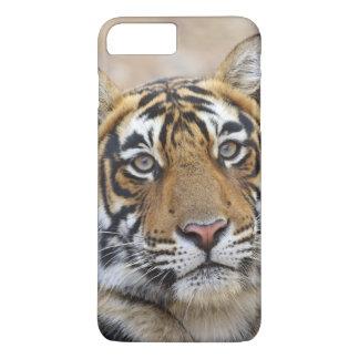 Coque iPhone 8 Plus/7 Plus Portrait de tigre de Bengale royal, Ranthambhor