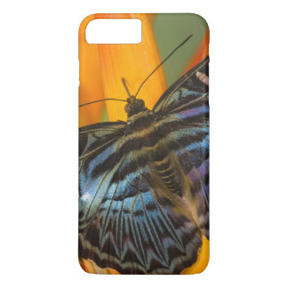 Coque iPhone 8 Plus/7 Plus Sammamish, papillon tropical 24 de Washington