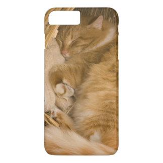 Coque iPhone 8 Plus/7 Plus Sommeil tigré orange dans le panier