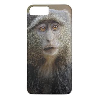 Coque iPhone 8 Plus/7 Plus Sykes ou singe bleu, mitis de Cercopithecus,