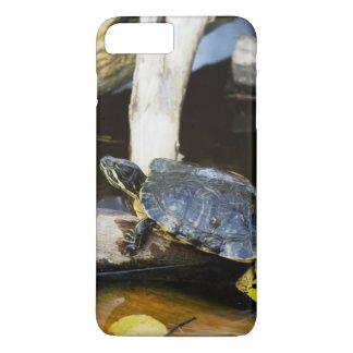 Coque iPhone 8 Plus/7 Plus Tortue de glisseur d'étang dans le sauvage