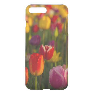 Coque iPhone 8 Plus/7 Plus Tulipes, festival de tulipe, Woodburn, Orégon,