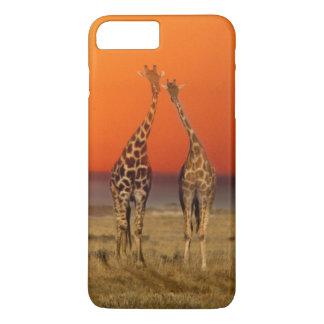 Coque iPhone 8 Plus/7 Plus Un couple de girafe entre dans le coucher du
