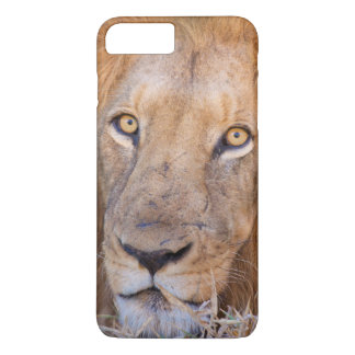 Coque iPhone 8 Plus/7 Plus Un portrait d'un lion