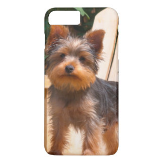 Coque iPhone 8 Plus/7 Plus Yorkshire Terrier se tenant sur la chaise en bois
