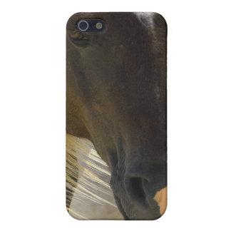 Coque iphone de photo de cheval de mustang iPhone 5 case