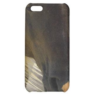 Coque iphone de photo de cheval de mustang étui iPhone 5C