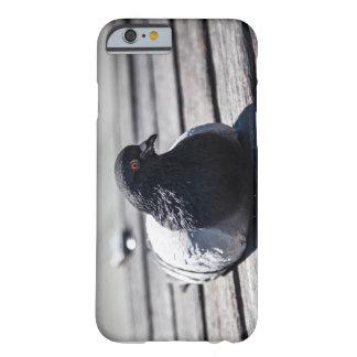 Coque iphone de pigeon de HDR