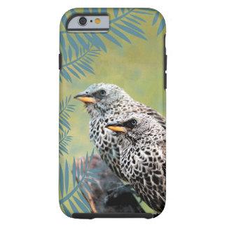 Coque iphone d'oiseaux coque tough iPhone 6