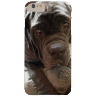 Coque iphone napolitain de mastiff